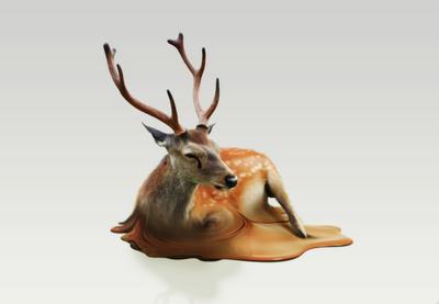Deer_fin