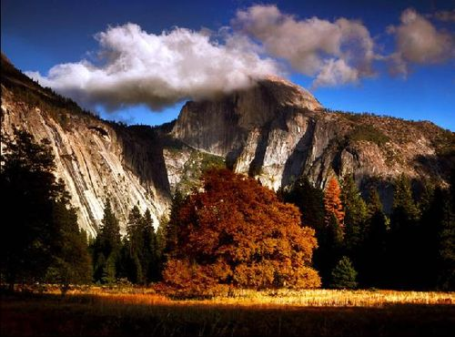 Travel | Yosemite - latimes.com_1287375498043