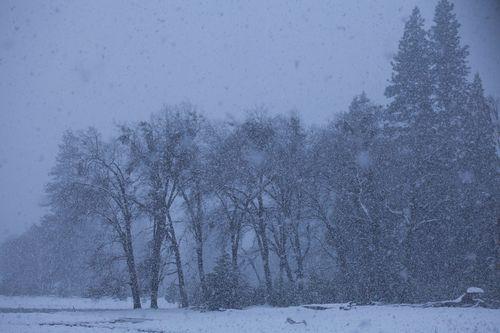 SnowfallingohsofastinYosemite