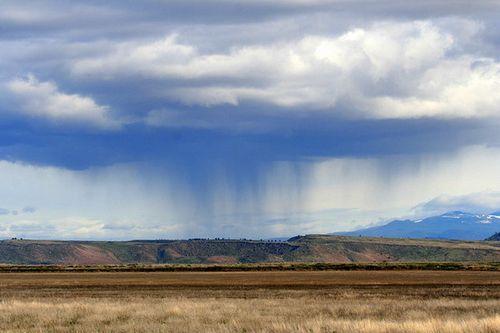 Desert-rain-1-28-13-thumb-600x400-44161