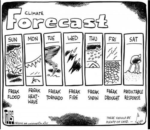 Tolesclimateforecast