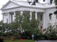 Elm_falls_at_white_house