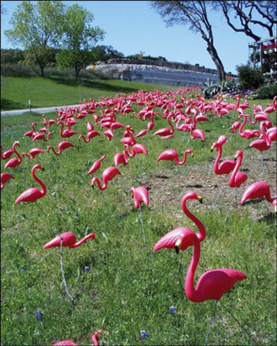 "jennifer price the plastic pink flamingo a natural history ap english language and composition free  2007 ap english language and composition free the passage below is an excerpt from jennifer price's recent essay ""the plastic pink flamingo: a natural history."